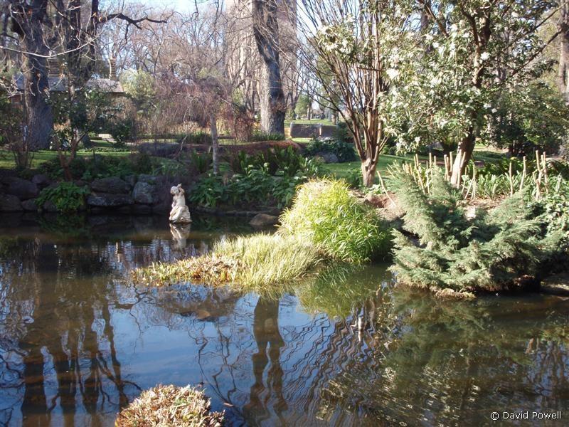 Sunny melbourne for Garden pond melbourne